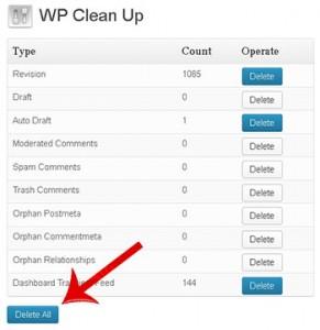 limpiar basura de wordpress